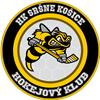 HK Sršne Košice